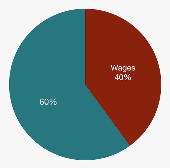 Employment Taxes - S Corp